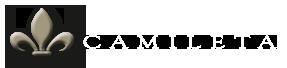 Camileta Logo